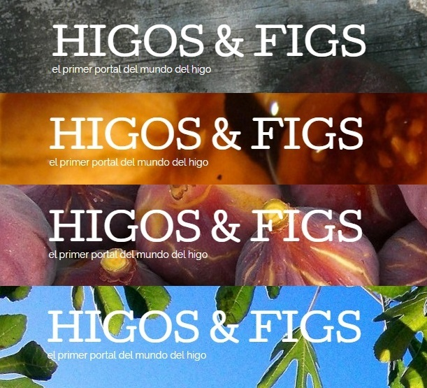 higos_and_figs