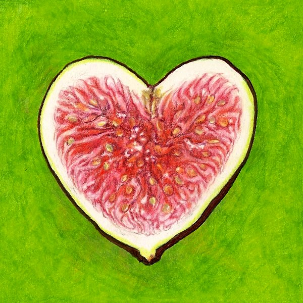 fig_heart